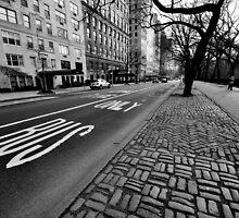 Bus Lane by Dan Bronish