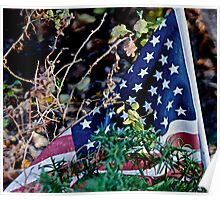 Overgrown Stars and Stripes Poster