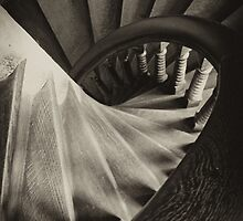 Downward Spiral by Shirley Harrison