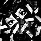 Fragmented Me ... by Erin Davis
