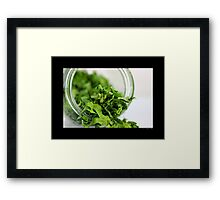 Petroselinum Crispum - Home Dried Garden Parsley Leaves In A Glass Jar Framed Print