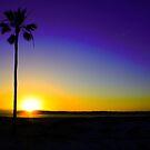 San Diego Sunset by Carrie Bonham
