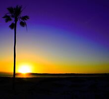 San Diego Sunset by Carrie Bonham
