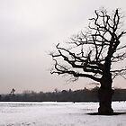Winter Oak in Morden Park, London by Ludwig Wagner