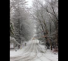 Snowy Street - Middle Island, New York  by © Sophie W. Smith