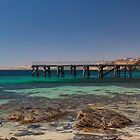Whaling Bay Jetty by Trevor Middleton