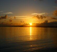 Island Sunrise by Brittany Brassell