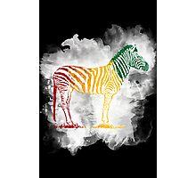 Red Green and Yellow Rasta Zebra Photographic Print