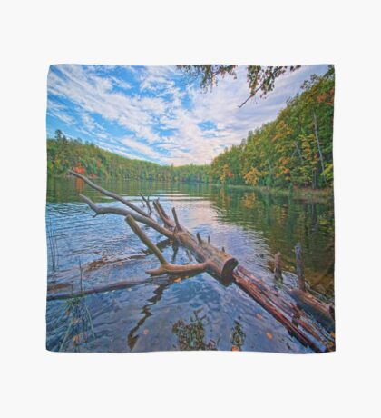 Water Logged Scarf
