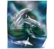 Dance Of The Dolphins Poster