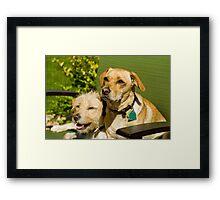 Jake & Elwood Framed Print