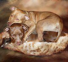 Pitbulls -  The Softer Side by Carol  Cavalaris
