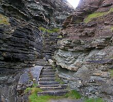 Cliff Steps, Mull Head by lezvee