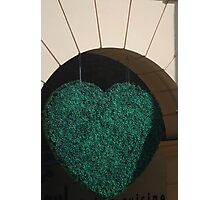 Envious Heart Photographic Print