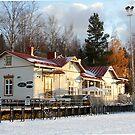 First Finnish snowfall by Stephanie Owen
