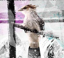 Cuckoo Design by JosePracek