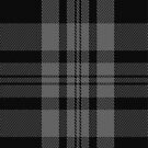 00525 Black Isle Tartan Fabric Print Iphone Case by Detnecs2013