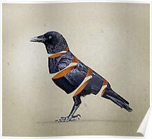 Raven Maker 02 Poster
