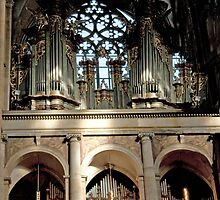 Magnificent Pipe Organ by phil decocco