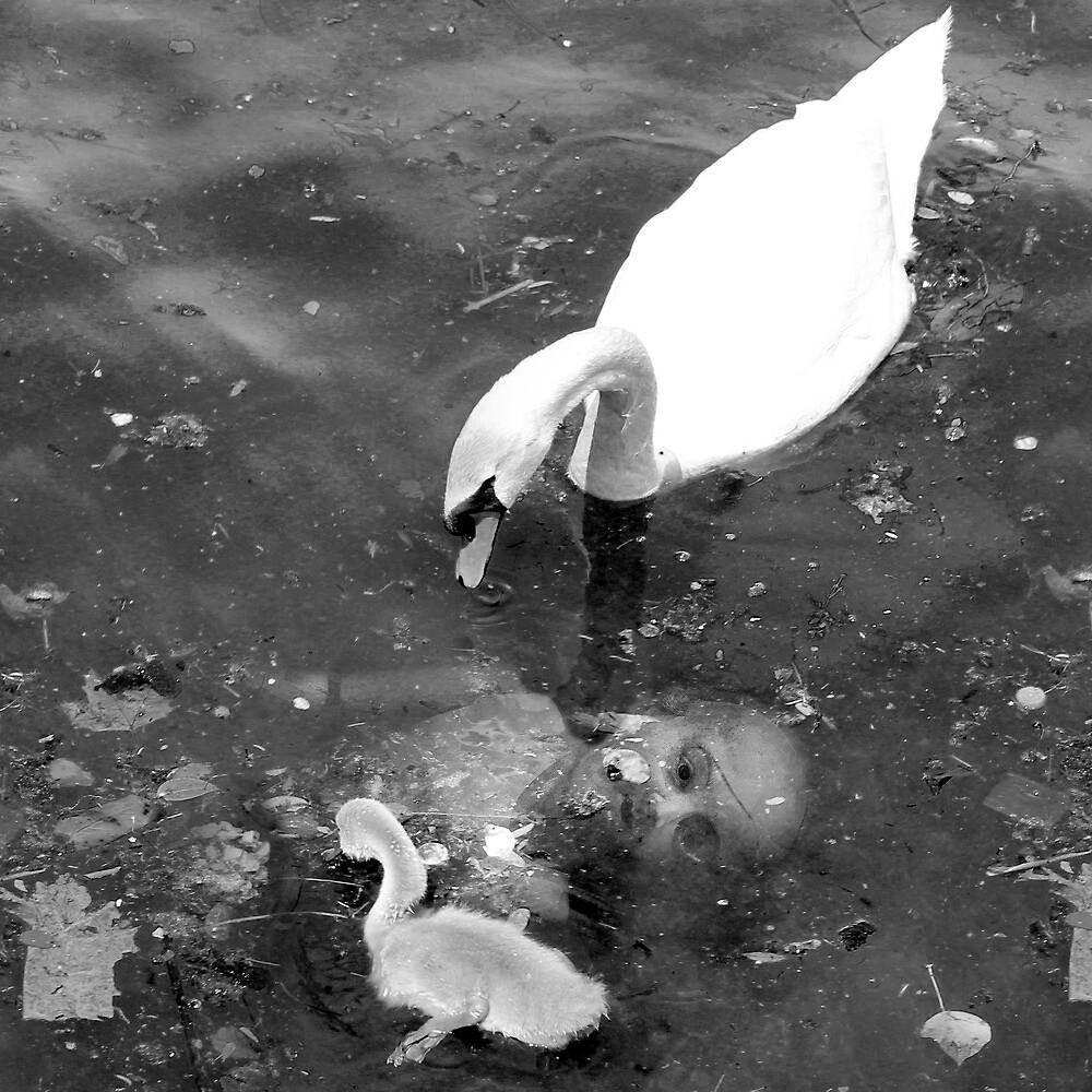 A Quiet Backwater by Farawayjoe