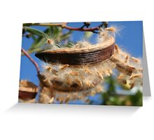 Spreading The Seeds of Oleander Greeting Card