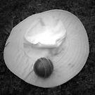 Cricket Hat & Ball by unstoppable