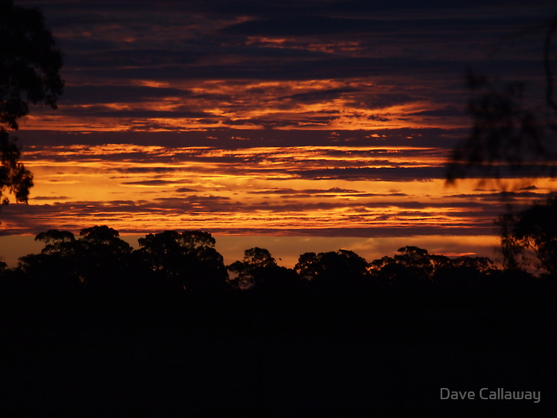 Tiger Sky by Dave Callaway