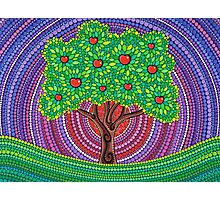 The Apple Tree of Knowledge Photographic Print