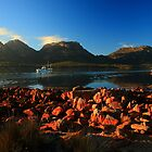 perfect hazard. coles bay, freycinet, tasmania. by tim buckley | bodhiimages photography