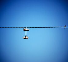 Two shoes and a bird by unstoppable