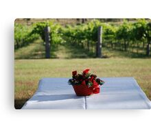 Christmas in the vineyard Canvas Print