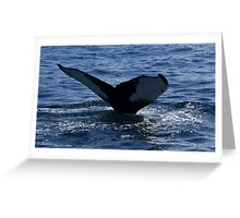 Whales Tail Greeting Card