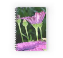 Purple And Pink Daisy Flower in Full Bloom Spiral Notebook