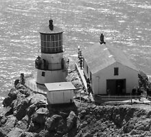 Point Rays Lighthouse Black & White by Tina Hailey