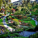 Butchart Gardens by Nancy Richard