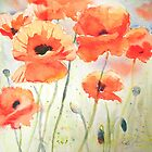 Poppy Meadow by Ruth S Harris