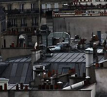 When I'm a cat on Paris Roofs .... Video - 3 mn by Clo Sed