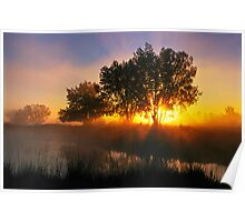 Buttercup Sunrise At Sawhill Ponds, Colorado Poster