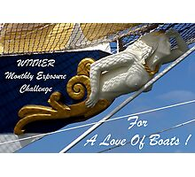 For a Love Of Boats/banner Photographic Print