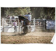 Boddington 2014 Rodeo Poster