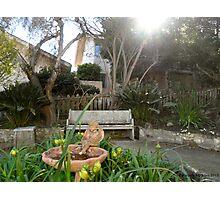 Old Monterey Garden  Photographic Print