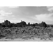 Black and White Kodachrome State Park,UT Photographic Print