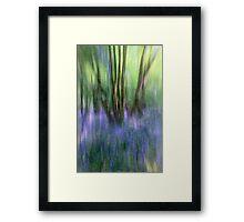 Essence Of Bluebells Framed Print