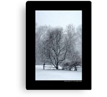 Tree Withstanding A Snowstorm - Middle Island, New York Canvas Print