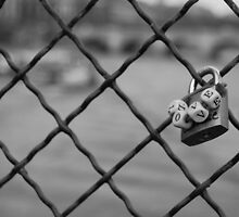 Love Lock Bridge by Daniel Pinnegar