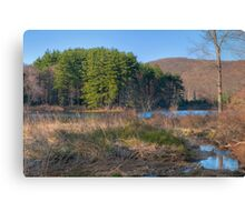 Lake Nawahunta In March Canvas Print