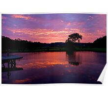 Morning on the Pond Poster