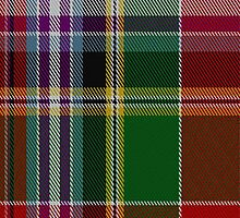 00589 Dundee Wallace Tartan Fabric Print Iphone Case by Detnecs2013