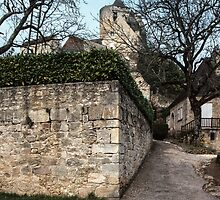 Castle Castlenaud with a gardner pruning orchard trees 198402270018  by Fred Mitchell
