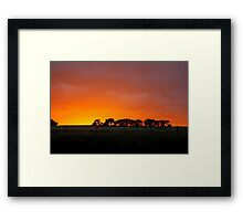 Sunset Murrumbateman  Rural NSW  Australia  Framed Print